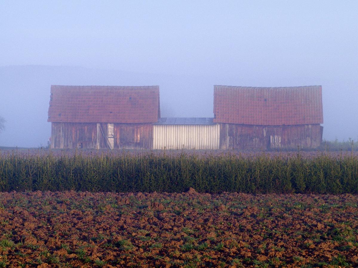 #259 Color-Minotar f2.8 35mm – Der Nebel lichtet sich