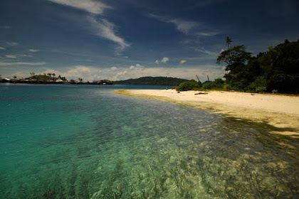 Relaxing Enjoy the atmosphere of the Tropical Forest on Malenge Island, Indonesian