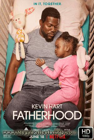 Paternidad [1080p] [Latino-Ingles] [MEGA]