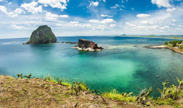 Indulge in the beauty of 'coral paradise' in Phu Yen