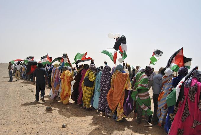 El Estado español es el responsable del sufrimiento del pueblo saharaui.