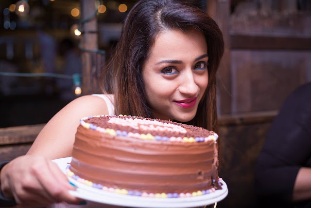 Actress Trisha Birthday Celebrations 2017