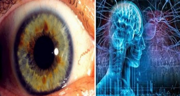 aceste toxine imbolnavesc ochii