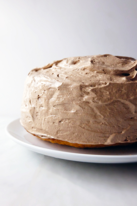 cocoa mountain frosting on cake