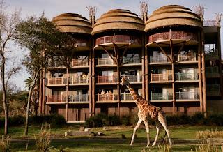 Best Disney Resort for Honeymoon animal kingdom lodge