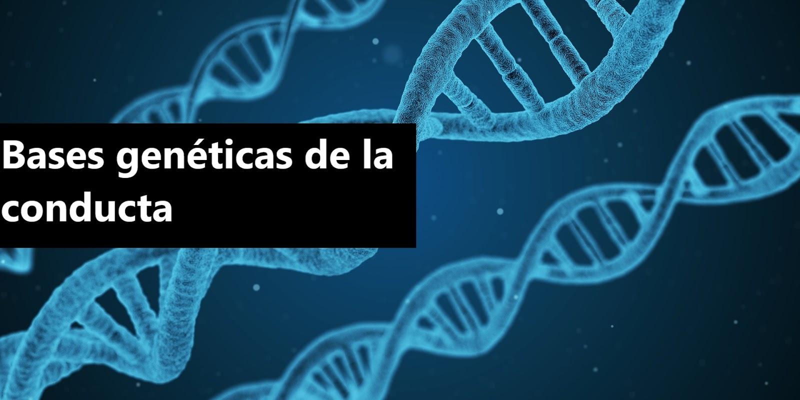 Bases genéticas de la conducta. PDF