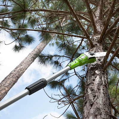 Best Gas Pole Hedge Trimmer