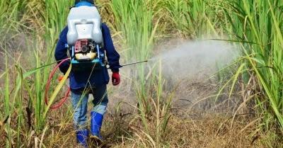 Cara Kerja dan Macam Fungisida ~ TLOGO TANI