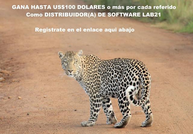 http://www.lab21online.com/p/contactanos.html