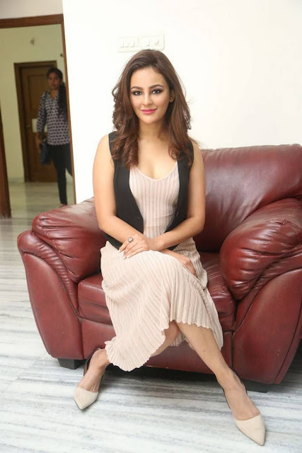 Seerat Kapoor Sexy Picture At Touch Chesi Choodu Movie Interview