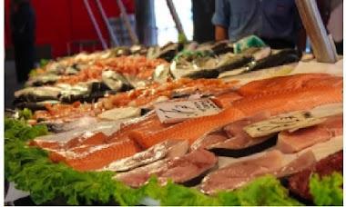 Kandungan gizi pada ikan laut dan manfaatnya