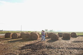 dried hay stack photo