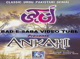 Drama Serial Ankahi Episode 1