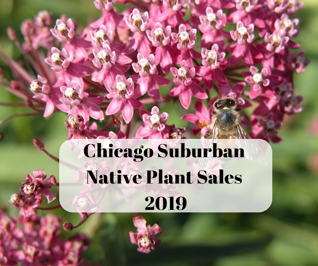 Chicago Suburban Native Plant Sales 2019