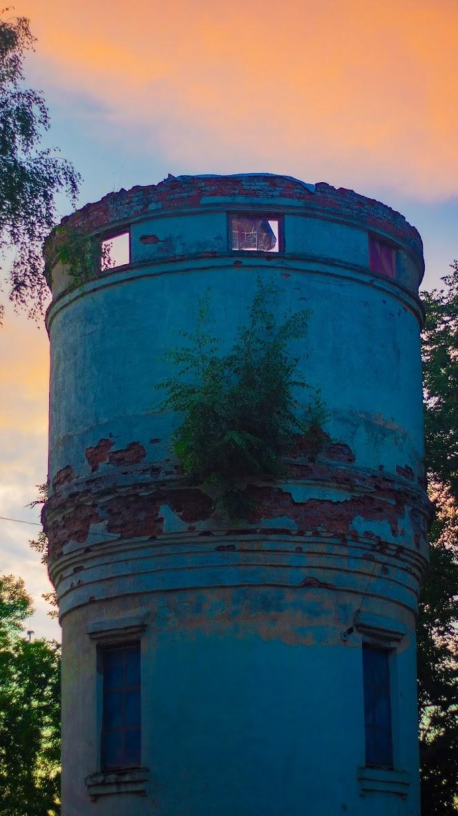 Куст закат дерево на стене водонапорка Павловск
