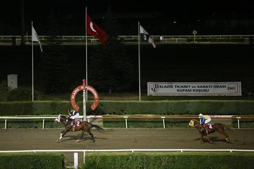 02 Ağustos Elazığ At Yarışı Galopları