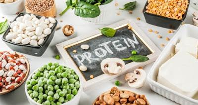 Pengertian Sintesis Protein, Tahapan, dan Fungsinya