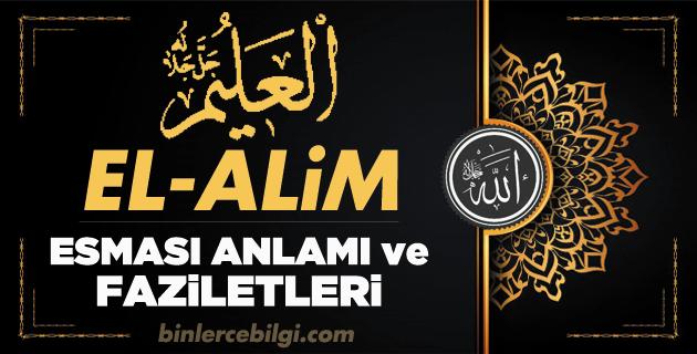 El Alim ism-i şerifi, Allah'ın (cc) 99 Esmaül Hüsnasından olan El-Alim ne demek, anlamı, zikri, fazileti nedir? ya Alim Ebced değeri, zikir adedi ve günü nedir?