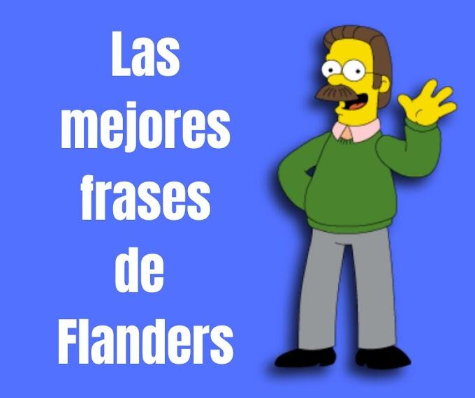 Las mejores Frases de Ned Flanders