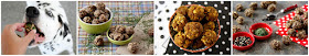 Dalmatian dog with a variety of homemade dog meatball treats
