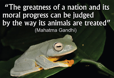 quotes about animal