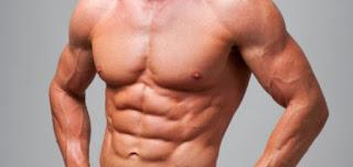 ما فائدة عضلات البطن