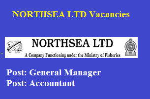 General Manager / Accountant