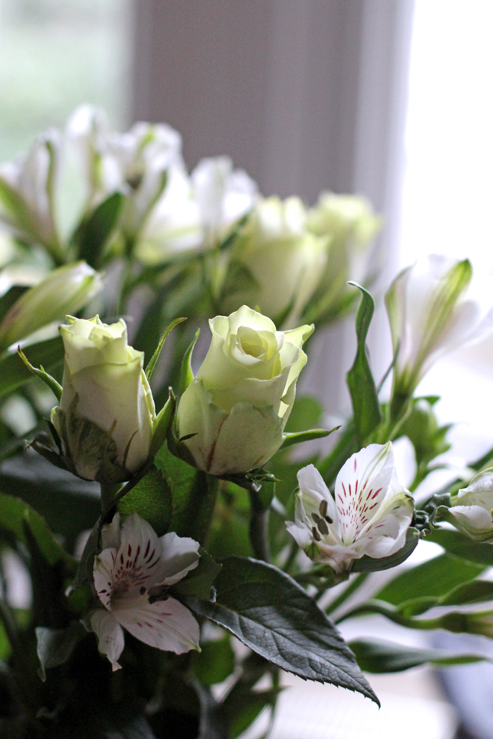 Blooms at home - London lifestyle blog