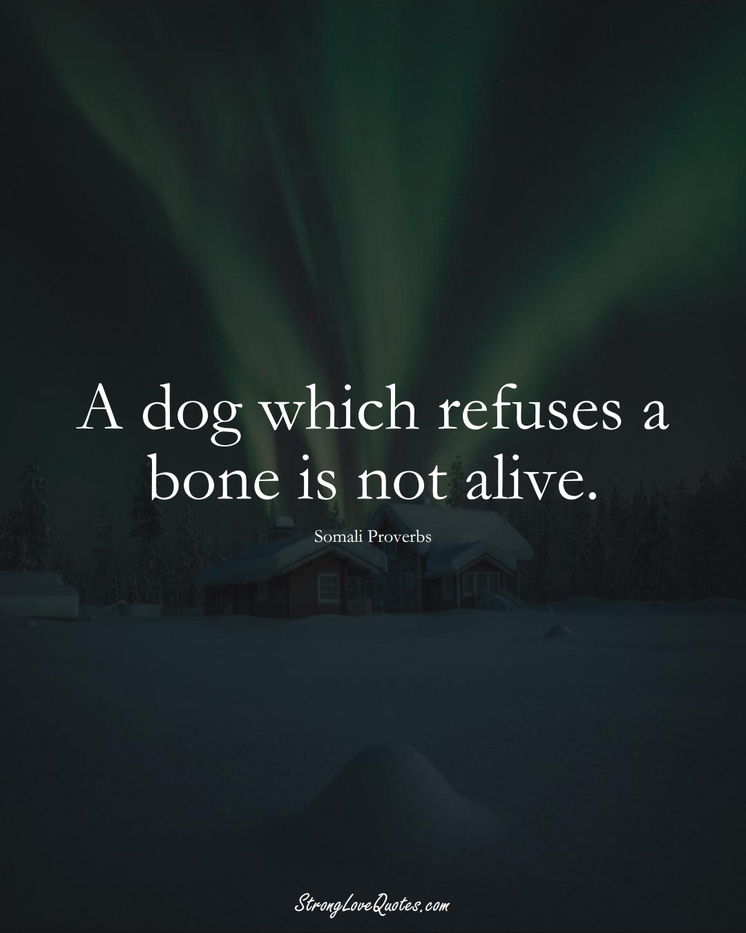 A dog which refuses a bone is not alive. (Somali Sayings);  #AfricanSayings