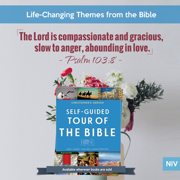 Read  Engage  Apply : Life-Changing Themes from the Bible