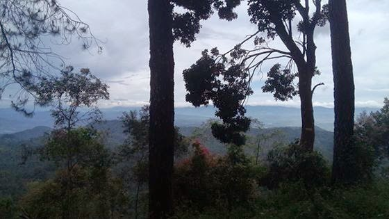 Objek Wisata Panorama Alam Puncak Pato