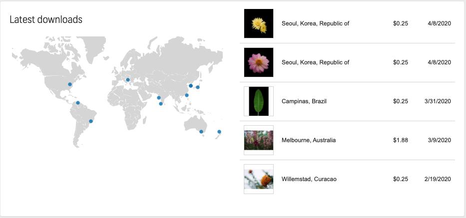 Screen hasil penjualan bunga di Shutterstock