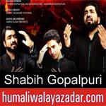https://www.humaliwalyazadar.com/2018/09/shabih-gopalpuri-nohay-2019.html