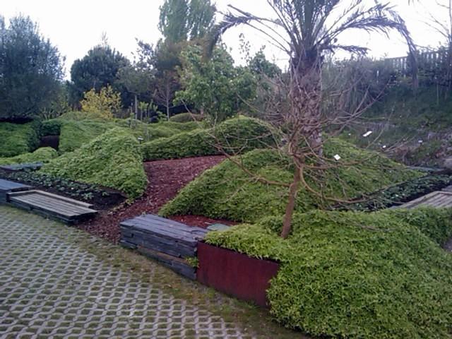 Paisajismo y dise o de jardines - Paisajismo jardines exteriores ...