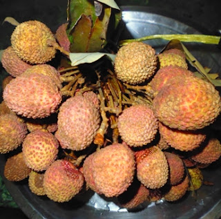 Summer Fruit in India