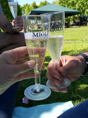 Wine Garden na Vinícola Miolo