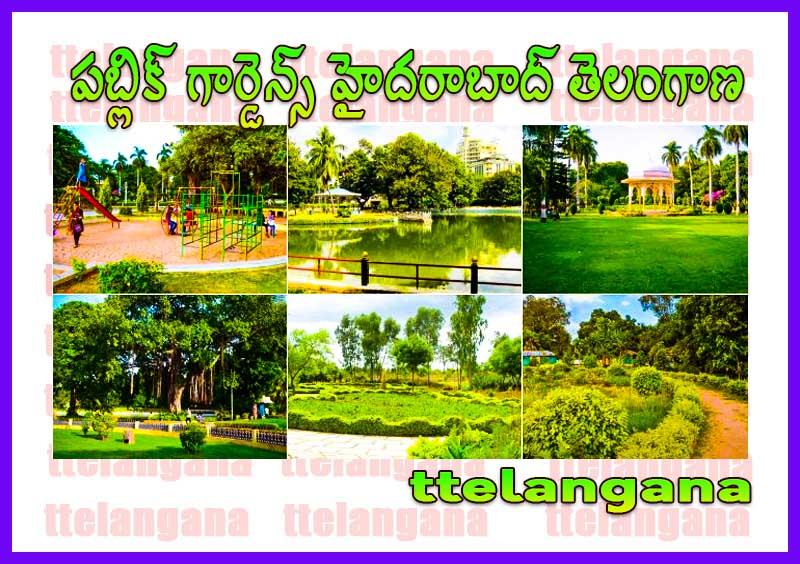 పబ్లిక్ గార్డెన్స్ హైదరాబాద్ తెలంగాణ Public Gardens Hyderabad Telangana