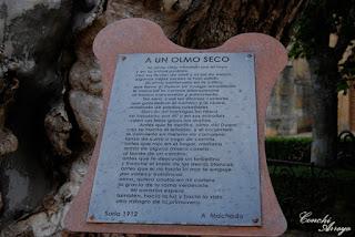 """Poema """"a un Olmo Seco"""" de Antonio Machado"""