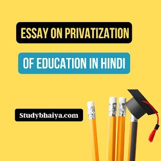 Essay on privatization of education in hindi