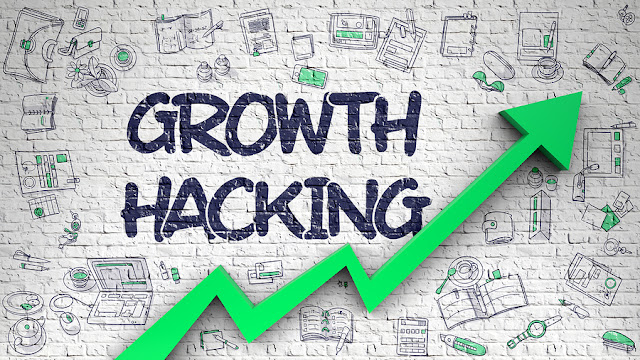 profesi growth hacker