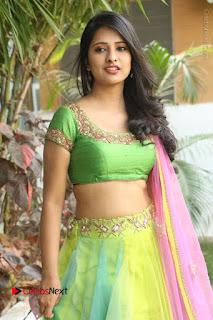 Actress Nikitha Bisht Stills in Lehenga Choli at Pochampally Ikat Art Mela Launch  0066.JPG
