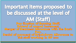 important-items-proposed-to-be-discussed-at-the-level-of-am-staff