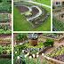 Πως να κάνετε τον τέλεια οργανωμένο κήπο - Πρακτικές ιδέες