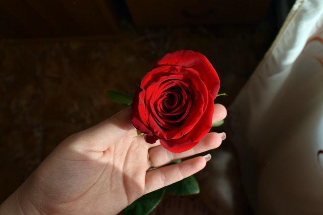 هل عدم الختان يؤثر على العلاقة الزوجية؟ اختلاف في الآراء