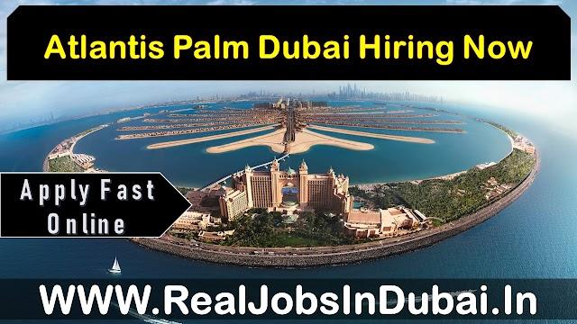 Hotel Jobs In Dubai | Atlantic Palm Dubai Careers | Dubai Hotel Jobs |