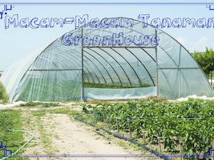 Manfaat Plastik Uv - Fungsi, Type, Dan Macam-Macam Tanaman Yang Cocok Untuk Greenhouse