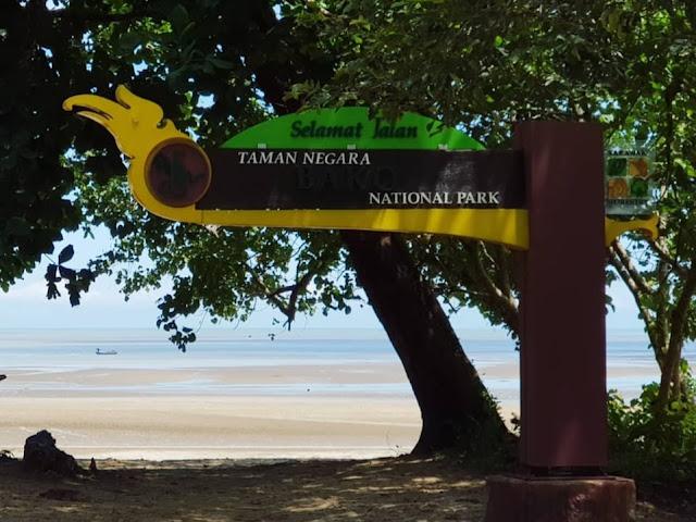 Taman Negara BakoTempat Dan Aktiviti Menarik di Kuching