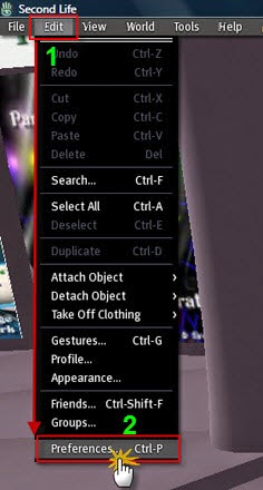 screenshot of second life - edit, preferences