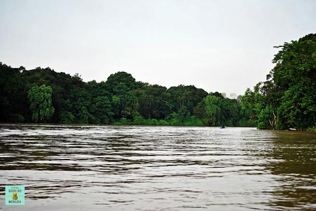 Río Kinabatangan, Malasia