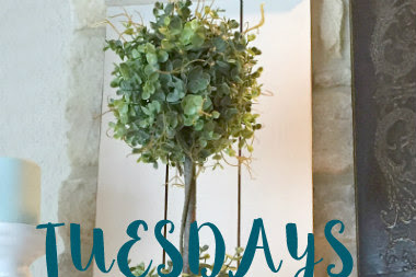 TUESDAYS AT OUR HOME #341 & FEATURES